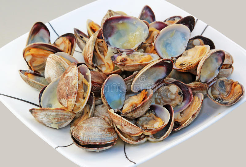 Cooked Clams. A plateful of steamed clams in shell stock photo