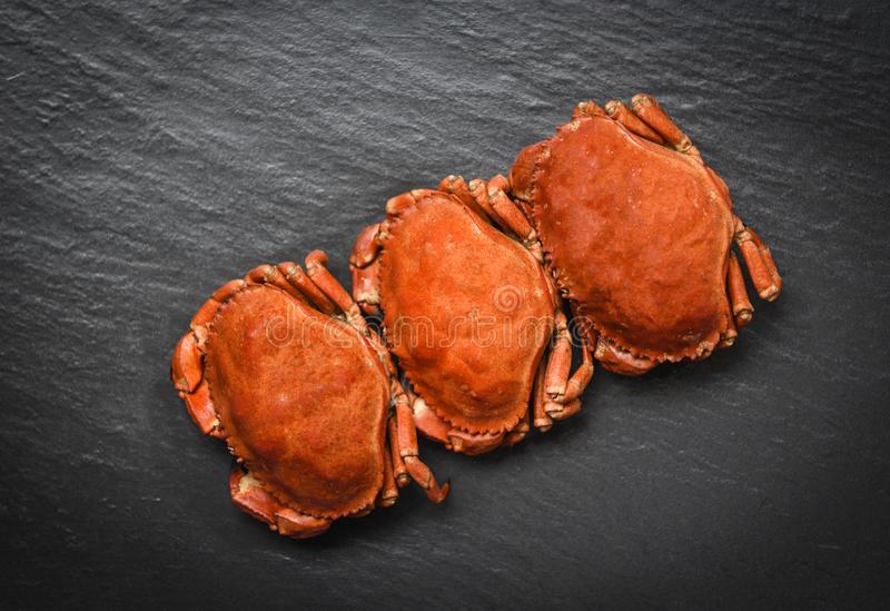 Cooked crabs on dark plate top view - stone crab steamed seafood stock photography