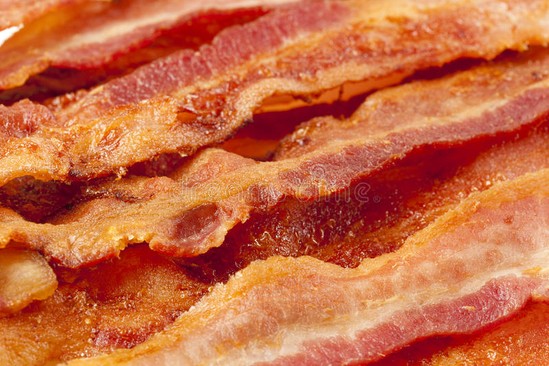 Cooked Greasy Bacon. Against a back ground royalty free stock image