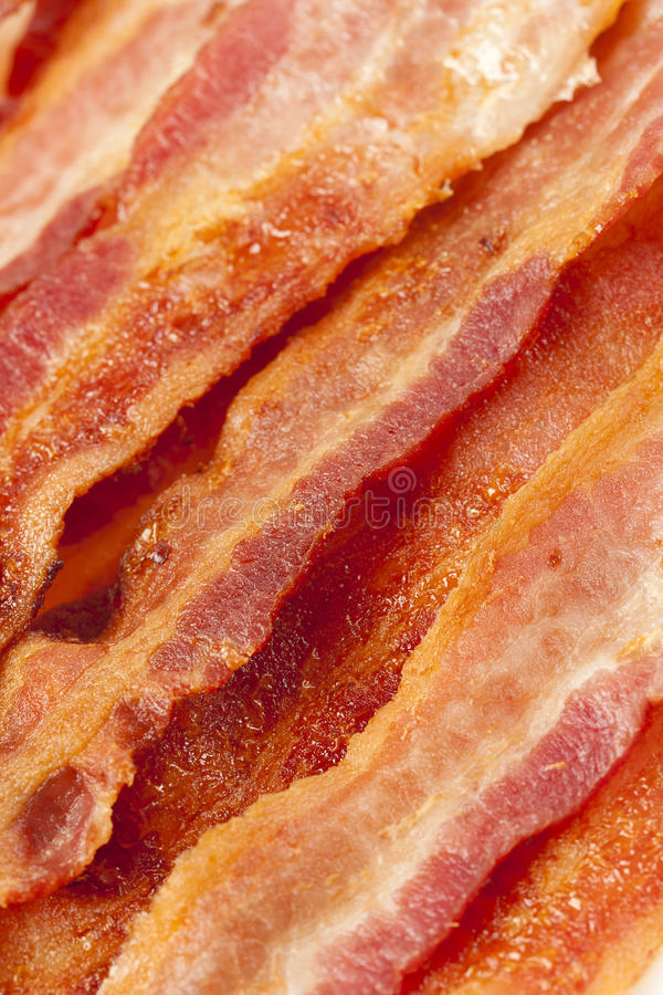 Cooked Greasy Bacon. Against a back ground stock photos