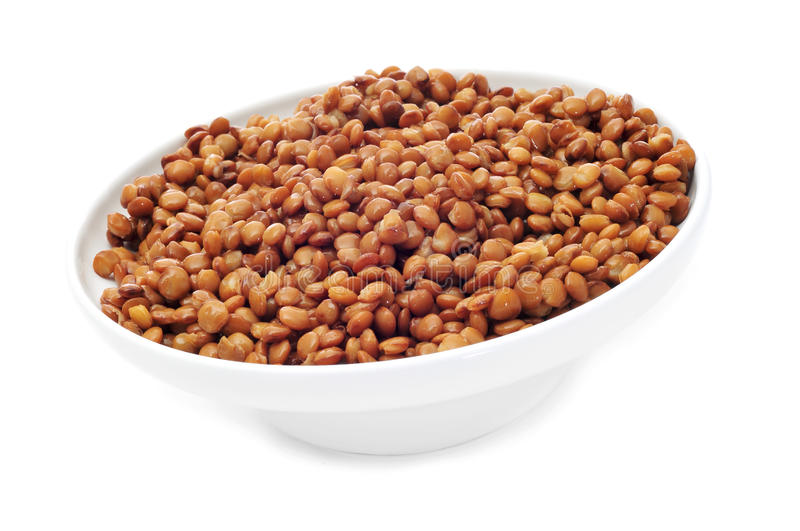 Cooked lentils royalty free stock photography