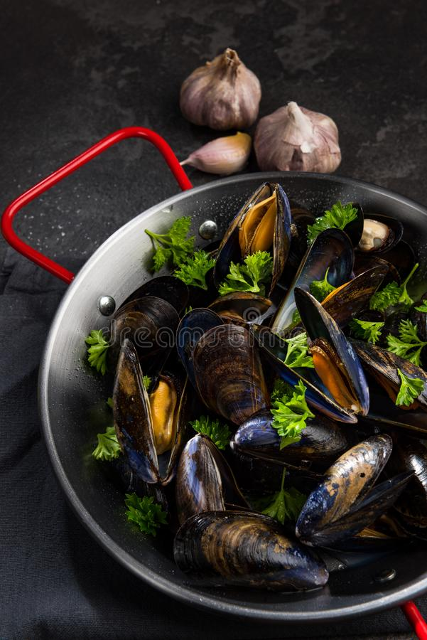 Cooked Mussels with GArlic and Fresh Parsley in Saucepan stock photo