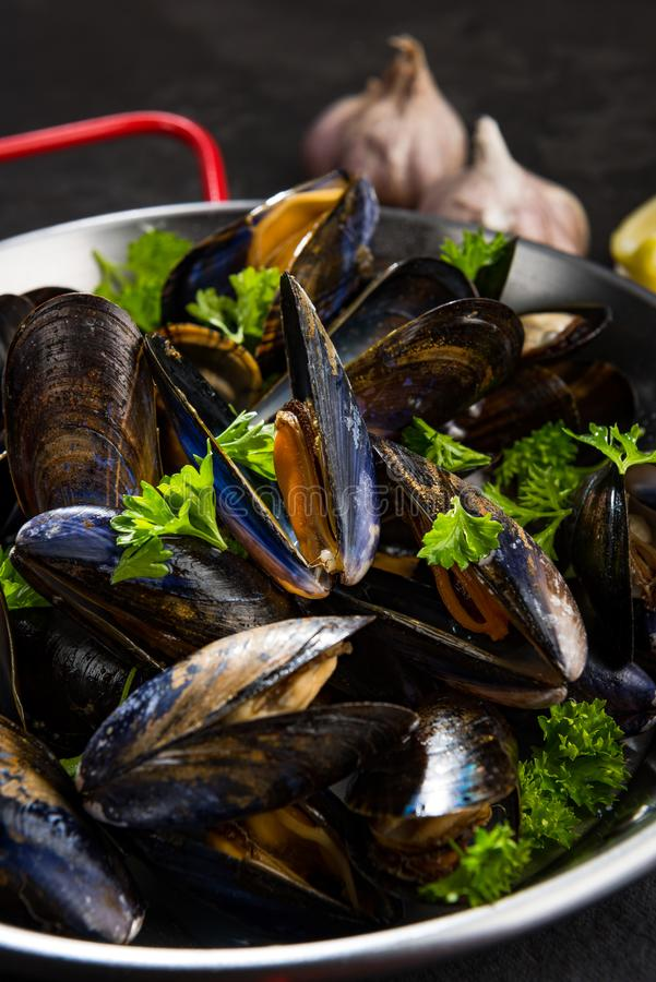 Cooked Mussels with GArlic and Fresh Parsley in Saucepan stock photos