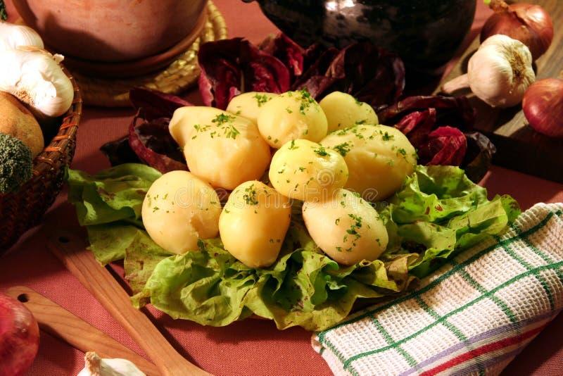Cooked potato stock photos