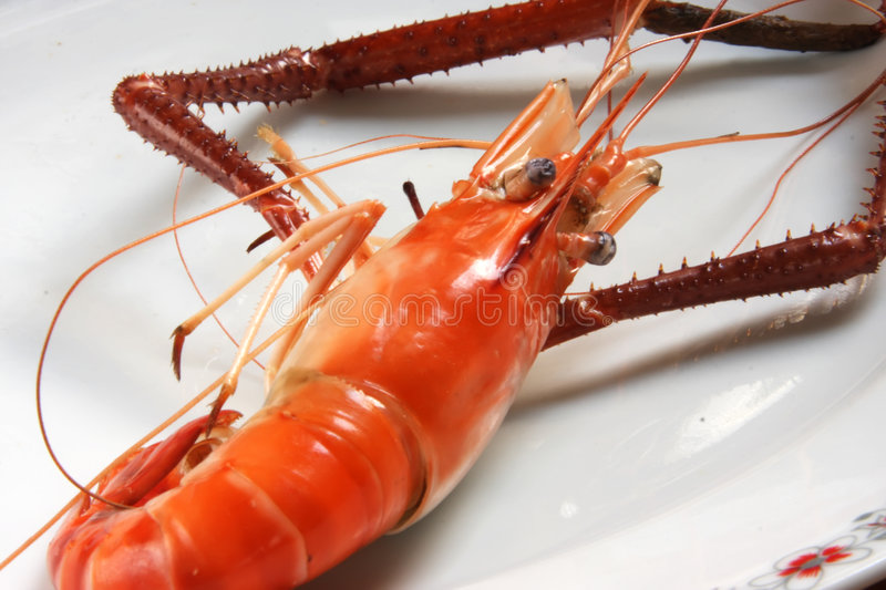 Download Cooked prawn stock image. Image of shrimp, fish, shell - 5134287