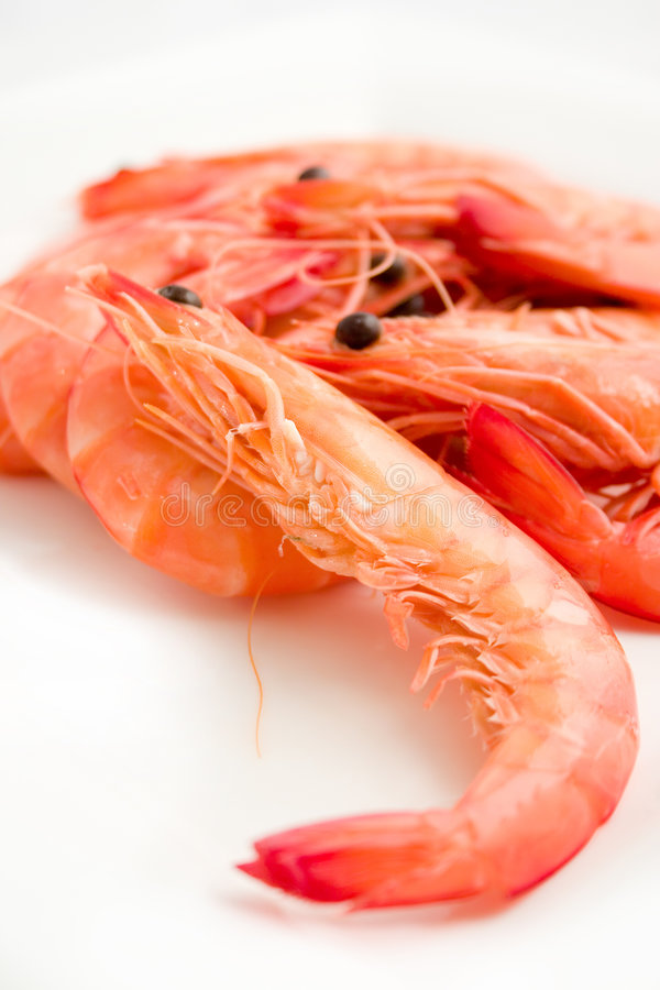 Download Cooked prawns stock photo. Image of seafood, plate, boiled - 2354028