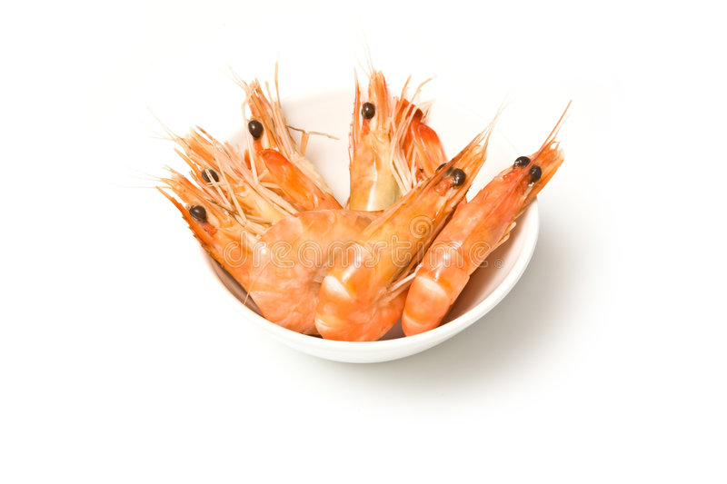 Cooked prawns in bowl stock image