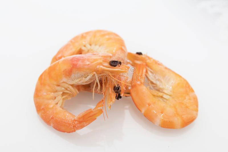 Cooked prawns isolated. In white background royalty free stock image