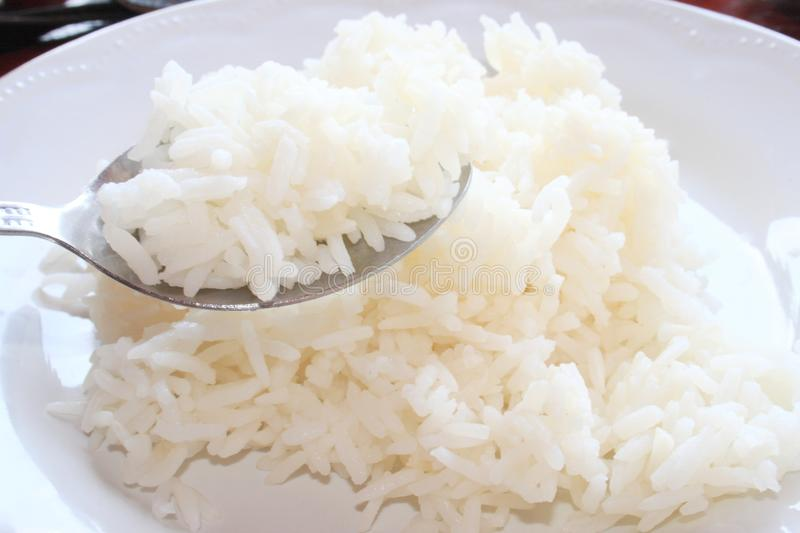Cooked rice on a dish stock photo