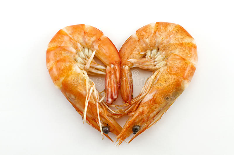 Cooked Shrimp royalty free stock image