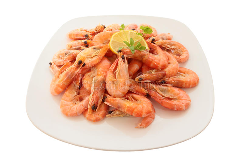 Cooked shrimp on a large plate. Isolated on white royalty free stock photography