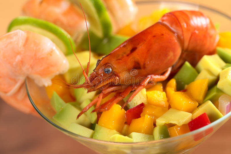 Download Cooked Shrimp on Salad stock photo. Image of fruit, food - 20184586