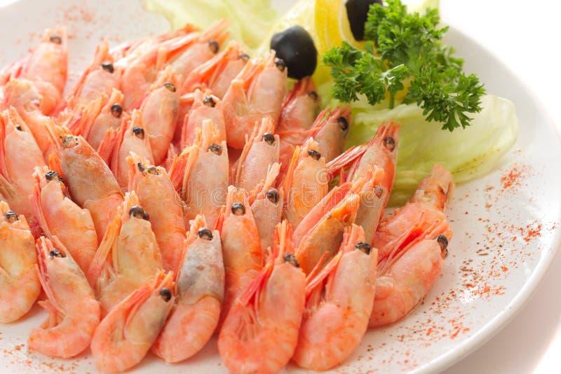 Download Cooked shrimps stock image. Image of shrimp, appetizer - 7087085