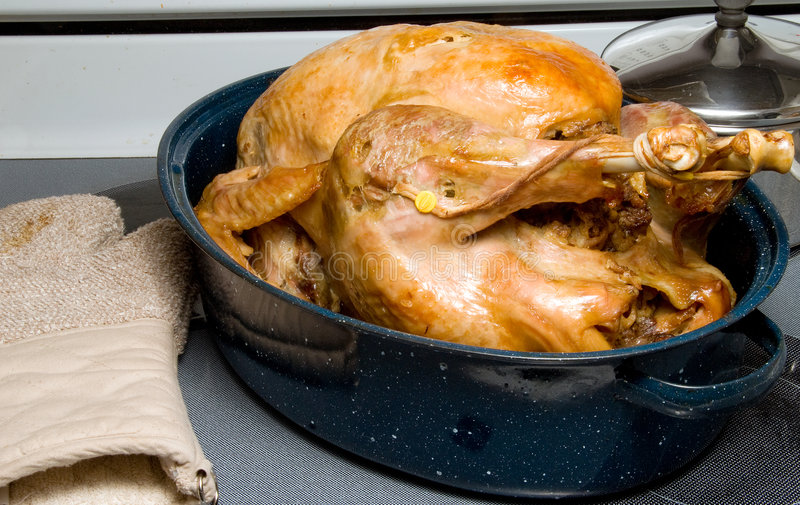Cooked Turkey stock photography