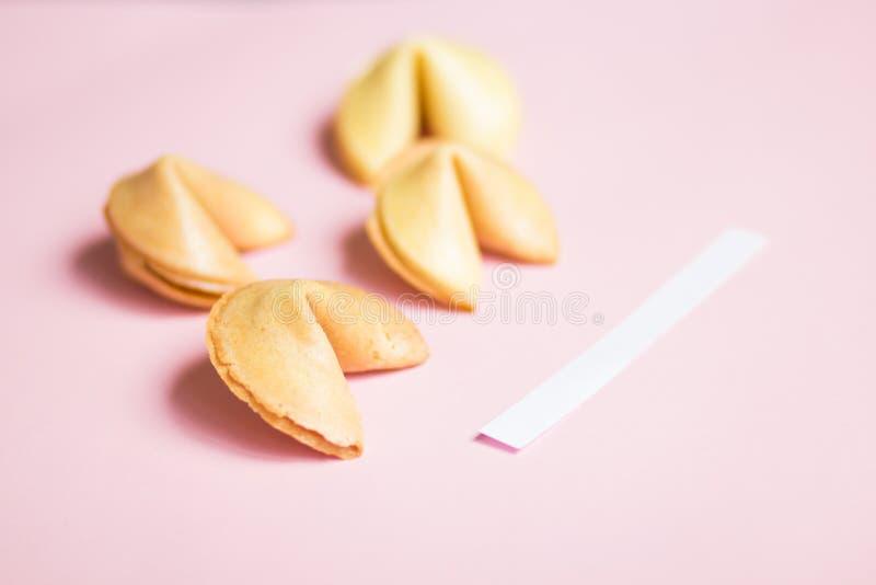 cookie de fortuna no rosa e no fundo azul, cores pastel, uma página vazia fotos de stock royalty free