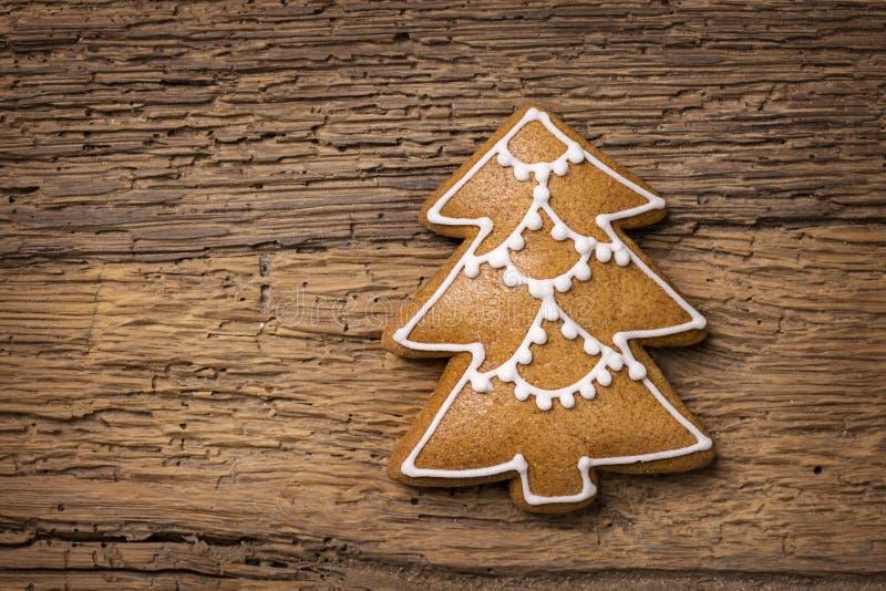 Cookie do pão-de-espécie da árvore de Natal fotografia de stock