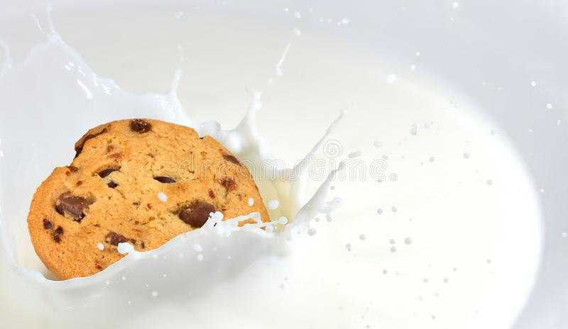 Cookie dunk in a bowl with milk. Milk splash. Delicious cookie dunk in a bowl with milk. Beautiful background with space for your text royalty free stock photography