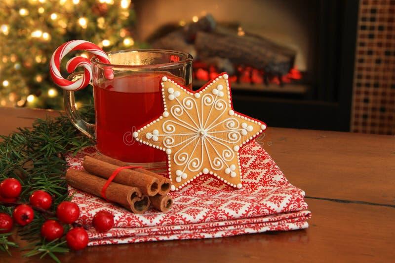 Cookie e bebida do Natal. fotos de stock royalty free