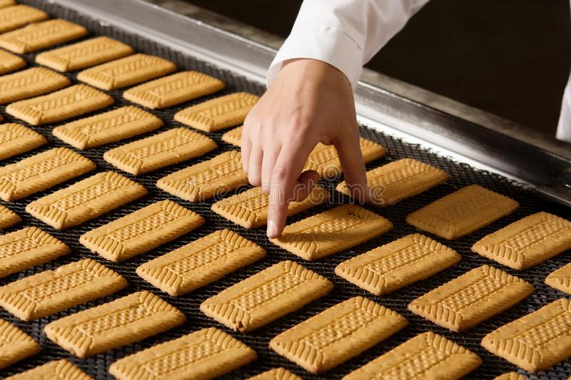 Cookie factory making royalty free stock photography