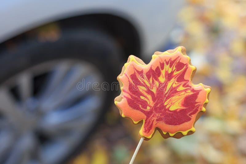 Cookie feito a mão saboroso sob a forma de uma folha de bordo no fundo de uma roda de carro na rua na queda fotografia de stock