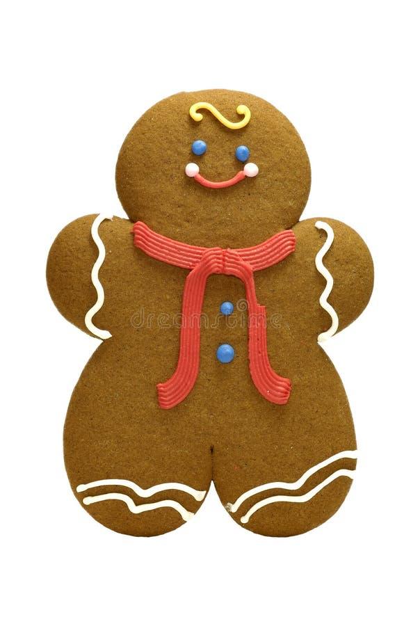 cookie miodownik obraz stock