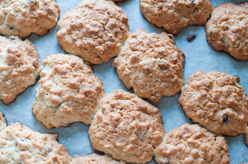 Download Cookies on a baking tray stock photo. Image of home, cookies - 26966360