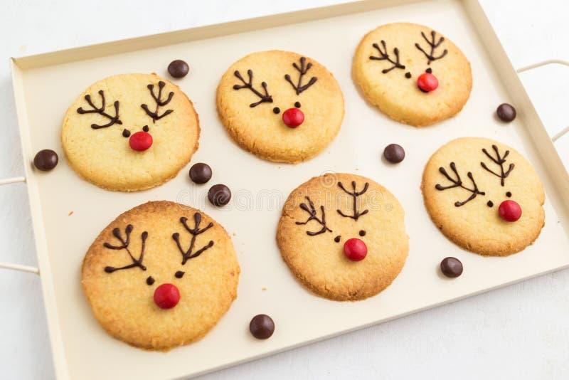 Cookies caseiros da rena foto de stock