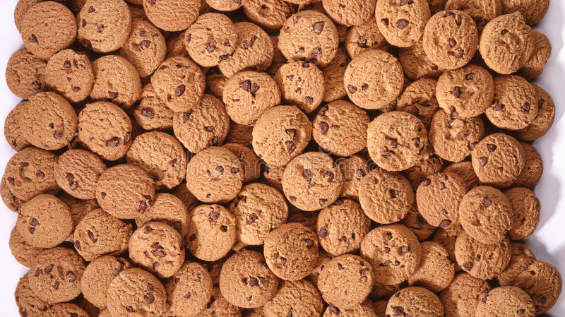 Cookies choc chip. Many choc chip cookies layed out flat royalty free stock photography