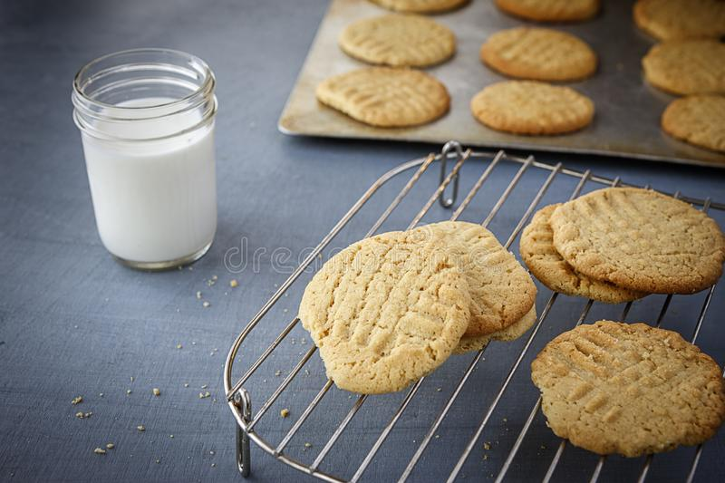 Cookies on a cooling rack. royalty free stock photo
