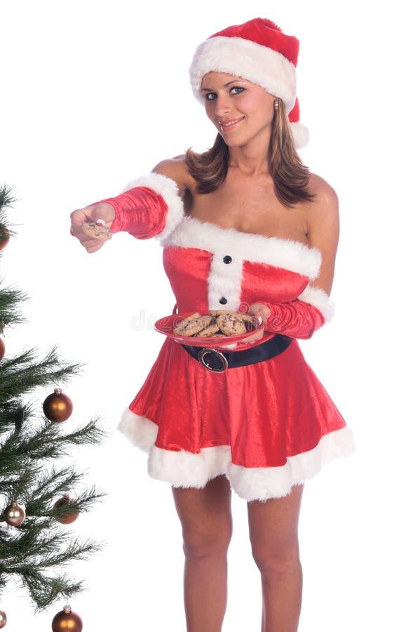 Cookies de Mme Santa photos libres de droits