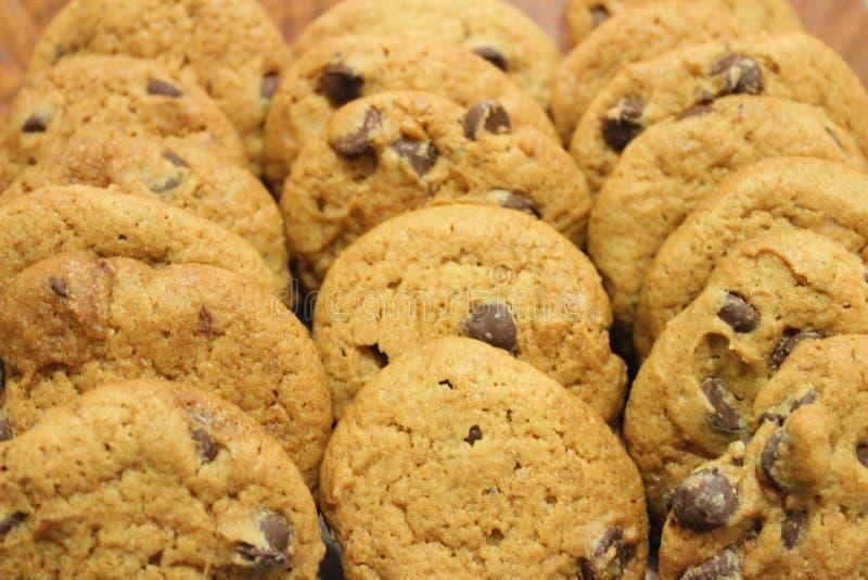 Cookies deliciosas dos pedaços de chocolate foto de stock royalty free