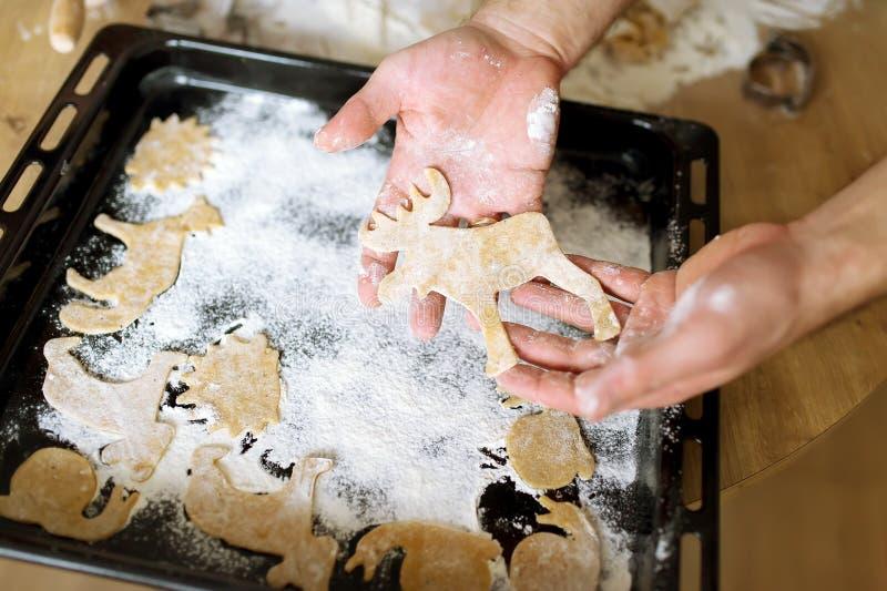 Cookies do gengibre - animais fotografia de stock