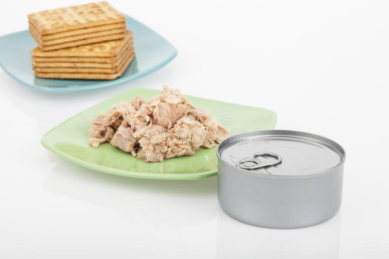 Cookies do sal com atum foto de stock royalty free