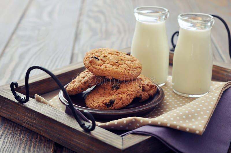 Cookies dos pedaços de chocolate imagens de stock royalty free