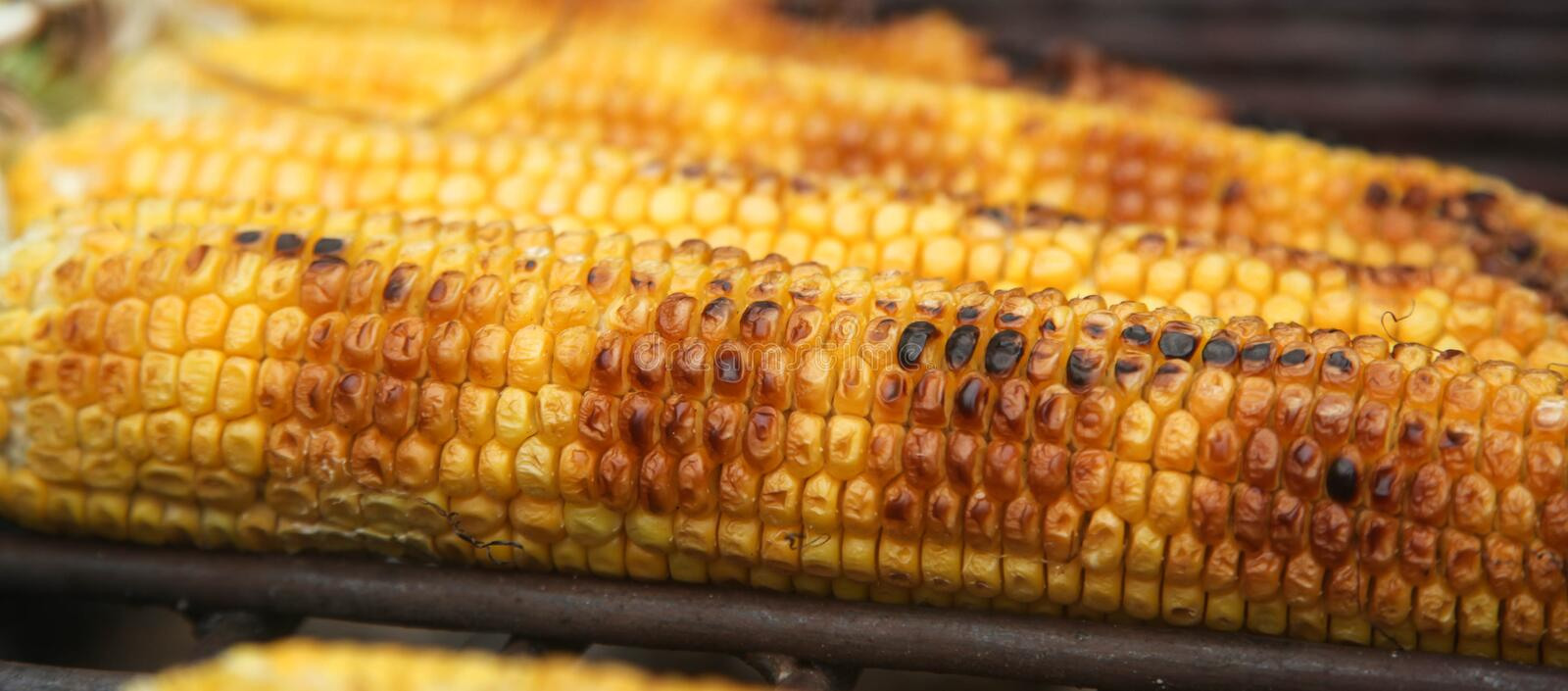 Cooking corn on the grill. stock image
