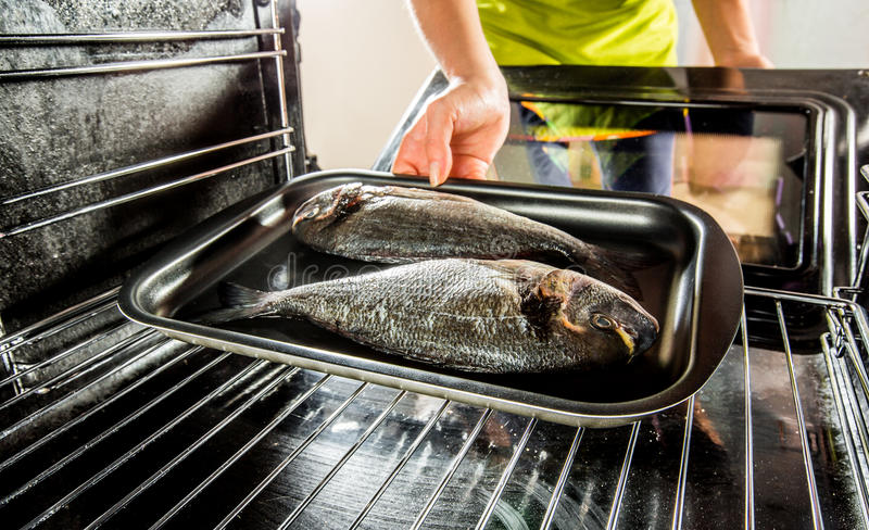 Cooking Dorado fish in the oven. stock image