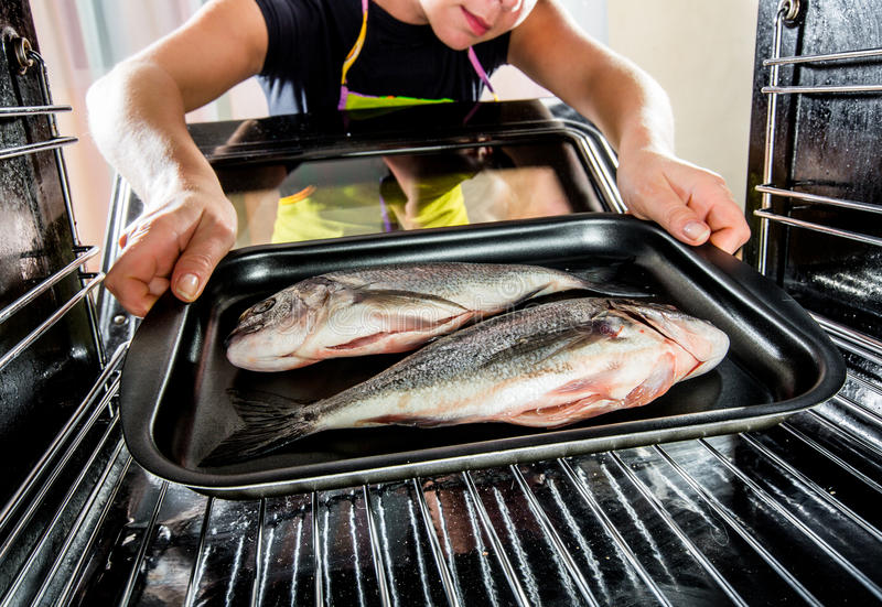 Cooking Dorado fish in the oven. royalty free stock photo