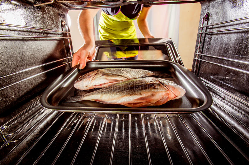 Cooking Dorado fish in the oven. royalty free stock images