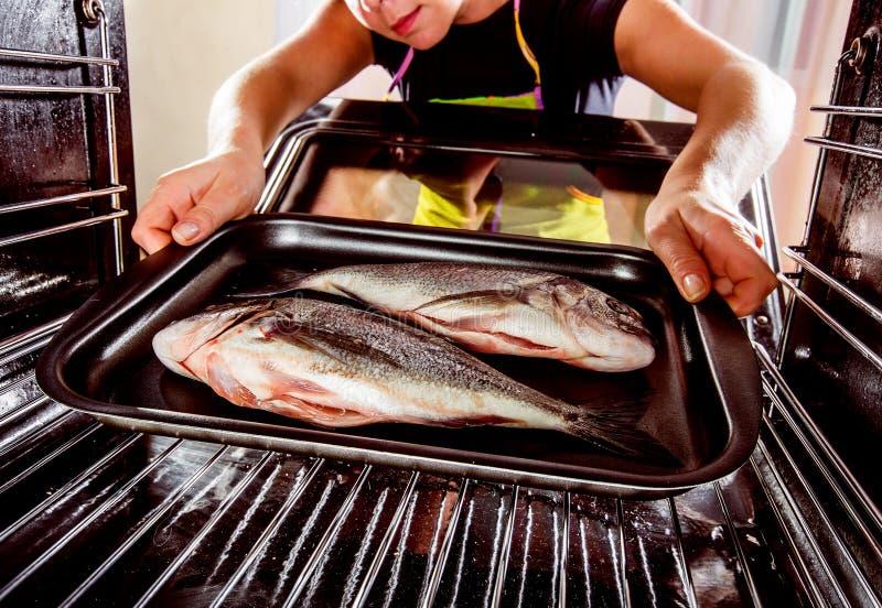 Cooking Dorado fish in the oven. stock photos