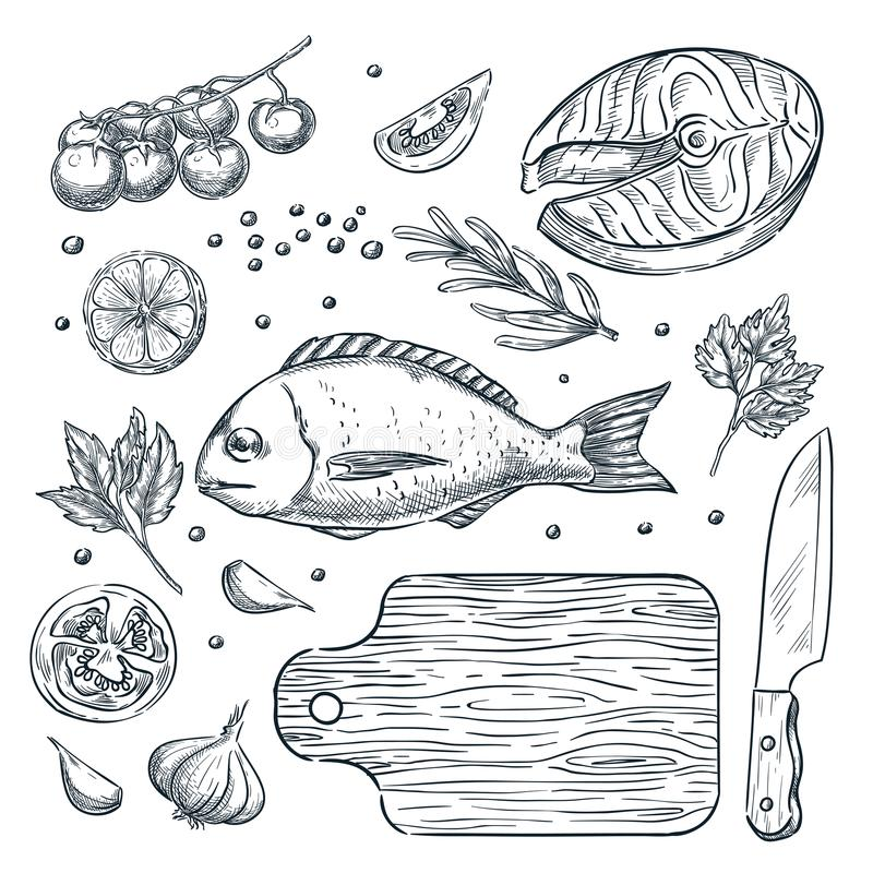 Cooking fish dorado and salmon steak, sketch illustration. Seafood restaurant menu design elements. royalty free illustration