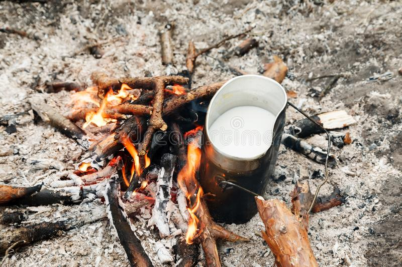 Cooking food on an open fire in camping pot.  royalty free stock photo