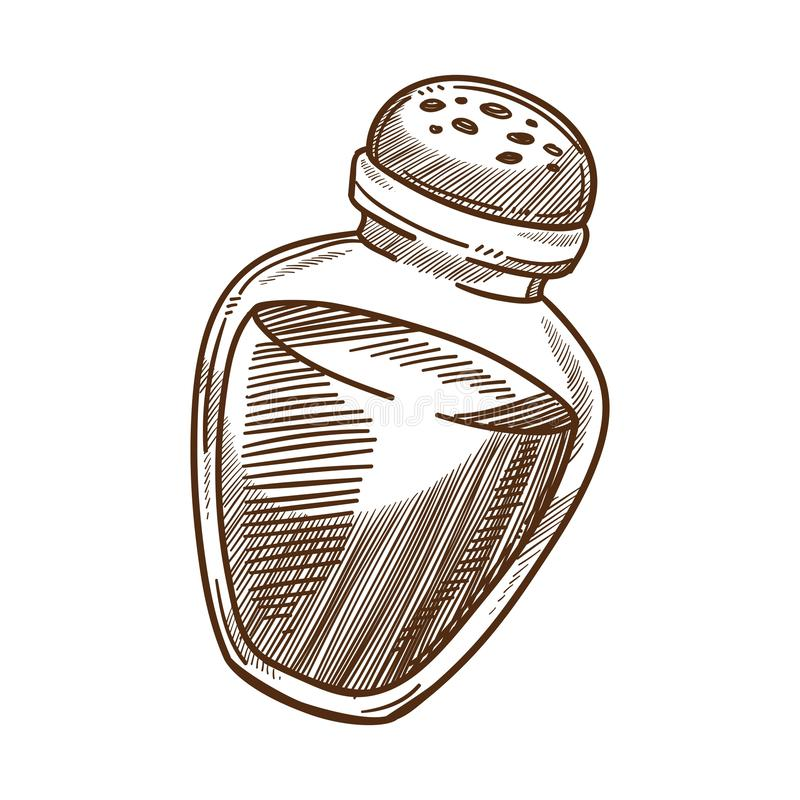 Cooking ingredient, salt shaker, spice or food seasoning. Salt shaker, baking and cooking ingredient or spice isolated sketch vector Food seasoning, kitchen vector illustration