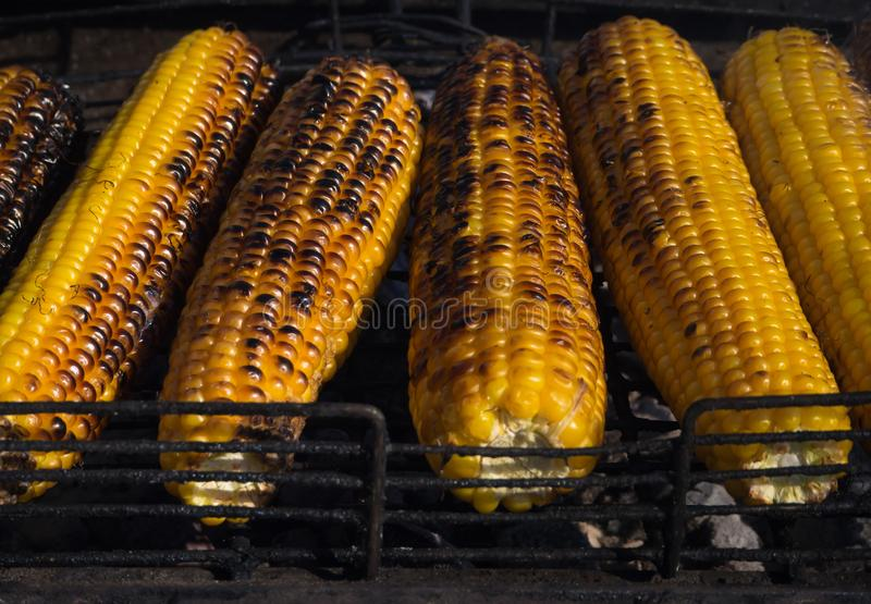 Cooking juicy corn on the grill. stock photos