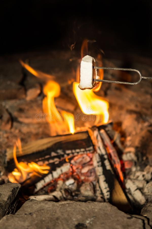 Cooking marshmallows on the camp fire. Cooking marshmallows for smores on a small camp fire while camping in New York royalty free stock images