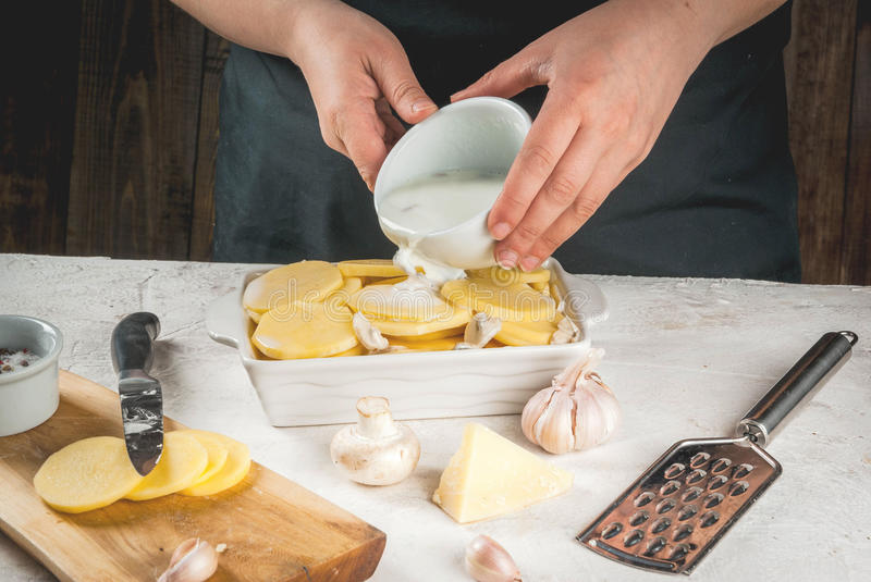Cooking potato gratin. Person is cooking of a traditional French dish - potato gratin: potatoes, milk, cream, eggs, cheese, mushrooms, spices. Casserole stock photos