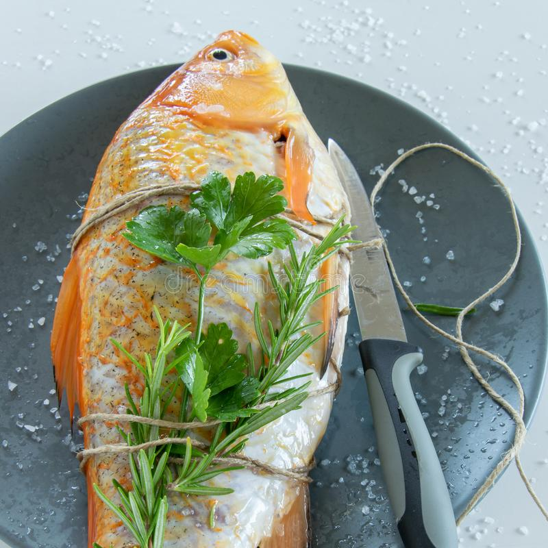 Cooking red  Carassius fish with fresh herbs. Healthy eating concept, space for text royalty free stock photo