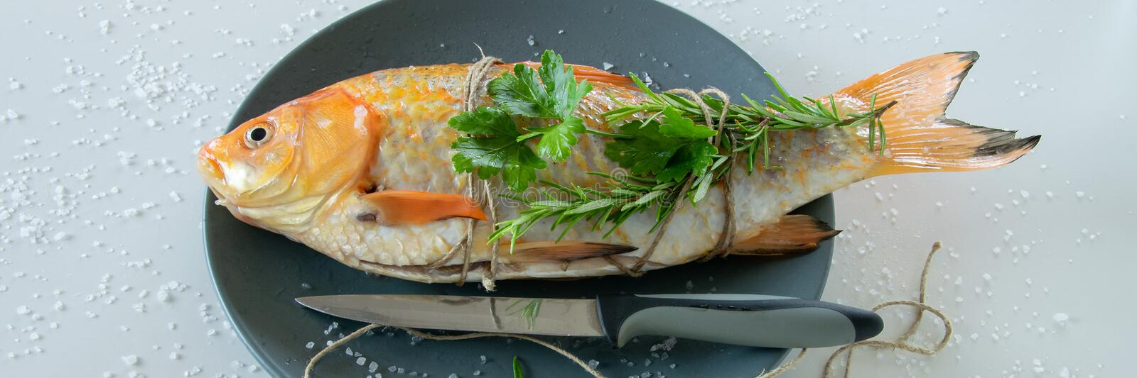 Cooking red  Carassius fish with fresh herbs. Healthy eating concept, space for text royalty free stock photography
