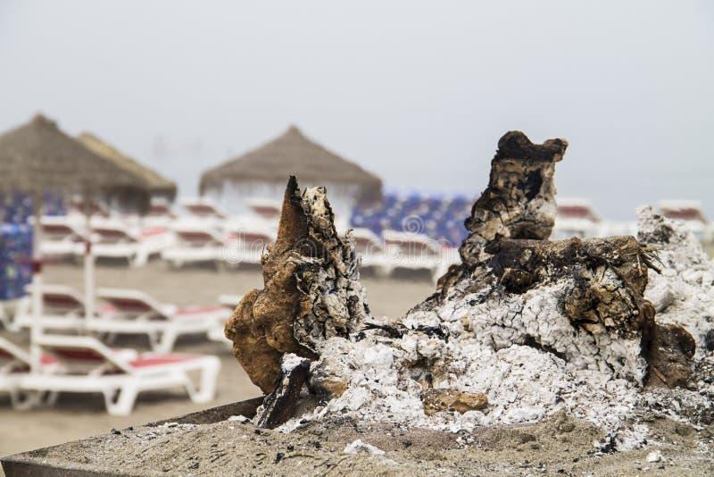 Cookout im Strand stockbild