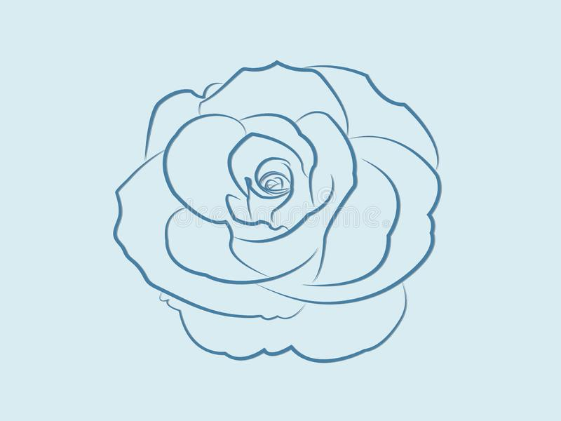A cool blue rose flower design blooming so beautiful with lines on light background stock illustration