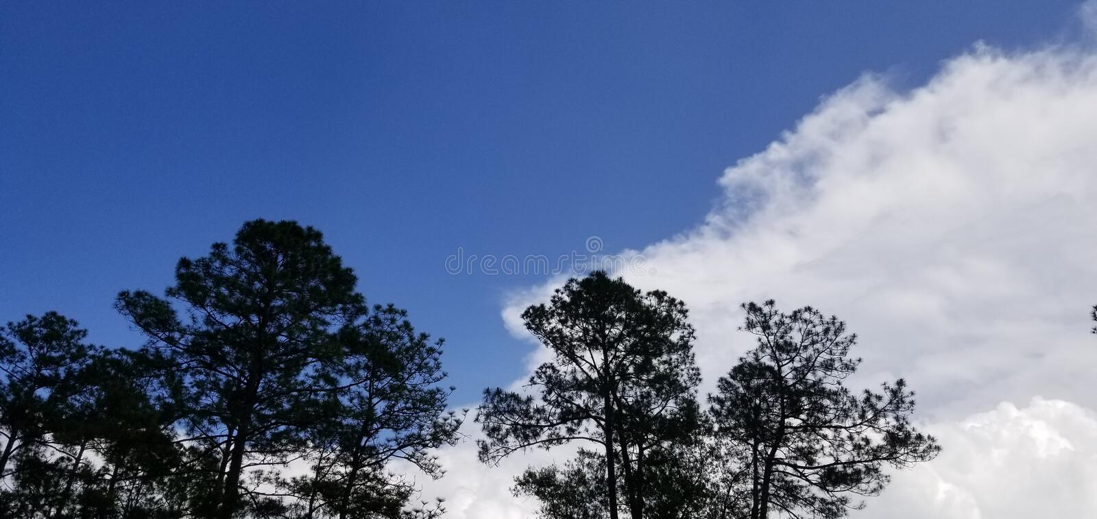 Cool Breezy Summer Afternoon Partly Cloudy stock photos
